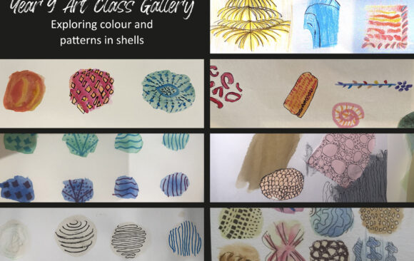 Year 9 Art Class Exploring Shells