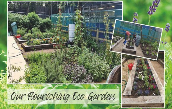 Our Flourishing Eco Garden